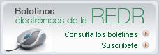Boletines electrónicos de la RedR