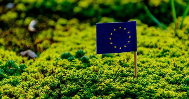 El Parlamento Europeo avala el reglamento transitorio de la PAC hasta 2022