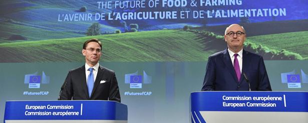 Phil Hogan, comisario europeo de Agricultura y Desarrollo Rural, avanza que la nueva PAC podría aprobarse antes de las elecciones del Parlamento Europeo de 2019