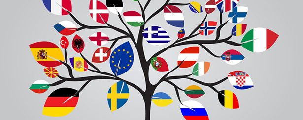 Más allá de la PAC: complementariedad de los fondos de desarrollo rural de la UE