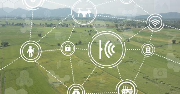 El Gobierno aprobará este viernes las directrices de la Estrategia Nacional frente al Reto Demográfico y la Estrategia de Digitalización del Sector Agroalimentario, Forestal y del Medio Rural