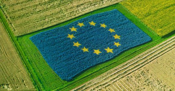 El ministro Planas valora que las nuevas medidas anunciadas por la CE van en la dirección adecuada y recogen las demandas españolas