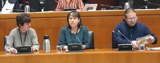 Los Grupos Leader muestran a las Cortes de Aragón su preocupación por el mantenimiento del presupuesto pactado hasta 2020 y los efectos que su incumplimiento podría tener para el medio rural