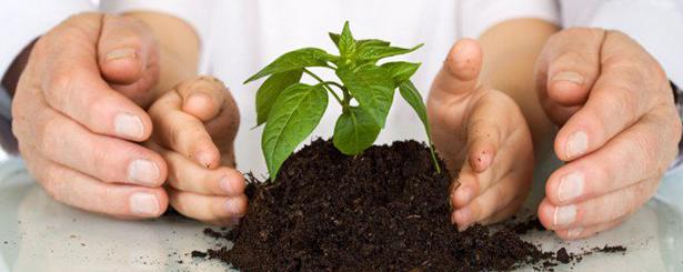 El MAPAMA admite la necesidad de replantearse la Ley de Desarrollo Sostenible del Medio Rural 'para que funcione'