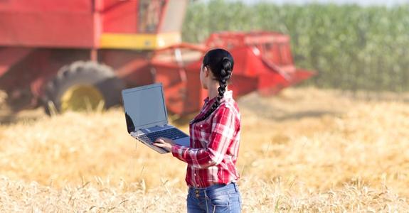 Más impulso a la banda ancha: 150 millones con la vista en el medio rural